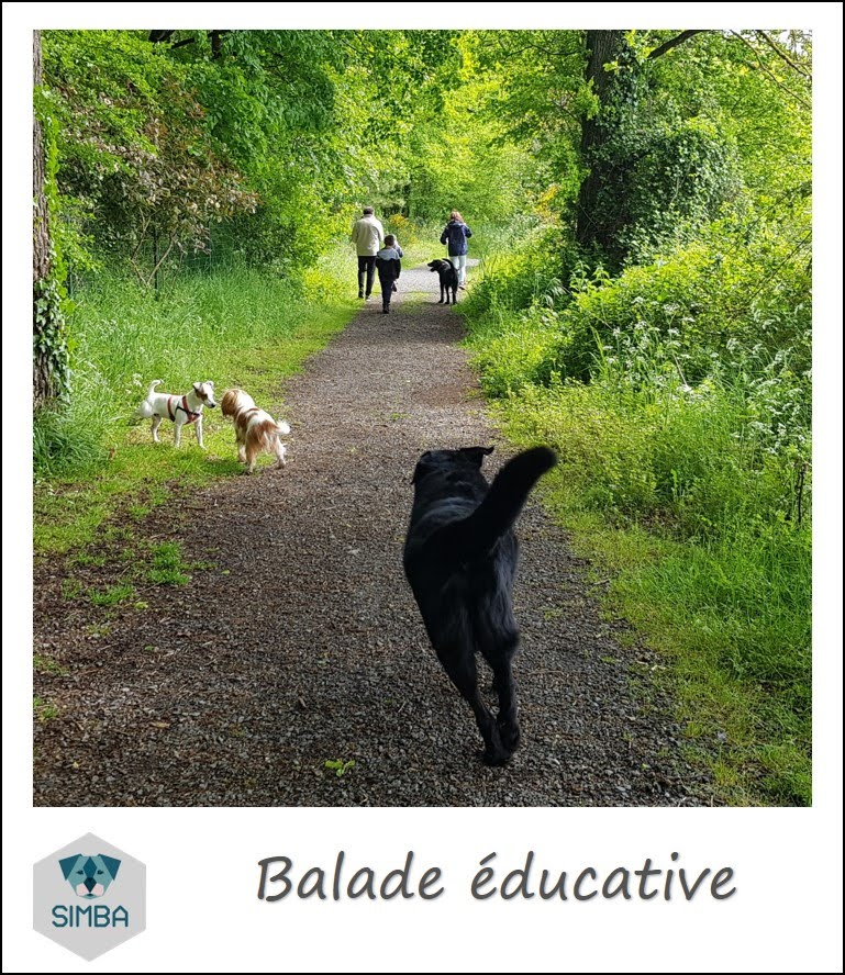 ballade éducatives,