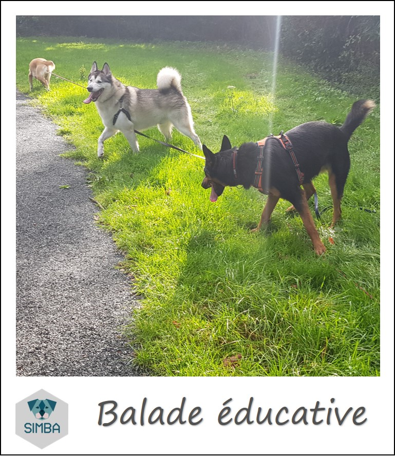 balade educative